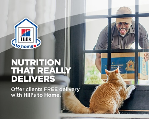 Mail carrier delivering a box of pet food with cat in window